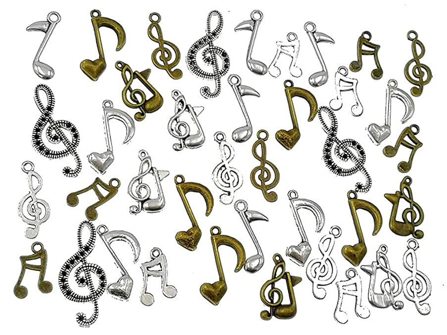 Kinteshun Music Notes Charm,Alloy Multistyle Musical Notation Symbol Charm Pendant Connector for DIY Jewelry Making Accessaries(100 Grams,About 80pcs)