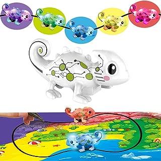colour chameleon toy