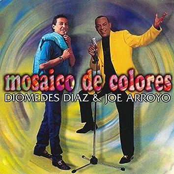 Mosaico De Colores
