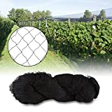 Bird Net, Heavy Duty Anti Bird Protection Mesh Net for Farms Vineyard Agricultural Planting, Black (Nylon, 25' x 50')