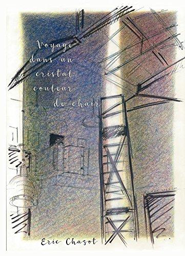 Voyage dans un cristal couleur de chair (French Edition)