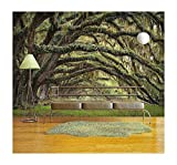 wall26 - Oaks Avenue Charleston Sc Plantation Live Oak Trees Forest Landscape in Ace Basin South Carolina Lowcountry - Removable Wall Mural | Self-Adhesive Large Wallpaper - 66x96 inches