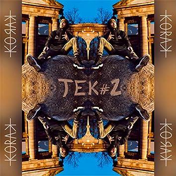 TeK #2