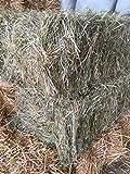 Ballot de Foin Natura 2000 - Bio - 70 * 50 * 40 - Entre 10 à 12kg