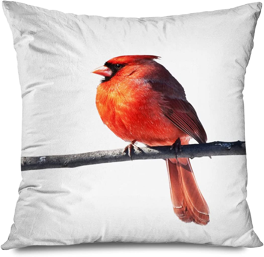 DANGCCI New Free Shipping Throw Pillow Cover Gorgeous 26