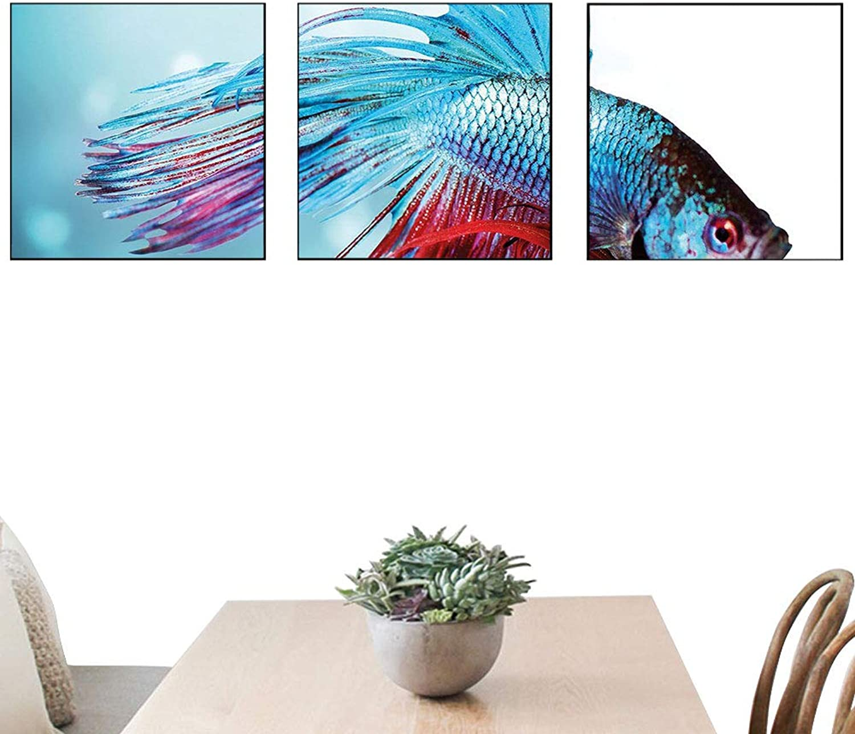 OfArt Aquarium Home Decorations Siamese Fighting Betta Fish Swimming in Aquarium Aggressive Sea Animal Living Room décor Sky bluee Dark Coral 20x20 inch