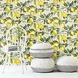 RoomMates RMK11655WP - Papel pintado para pared, diseño de cáscara de limón, Amarillo y beige