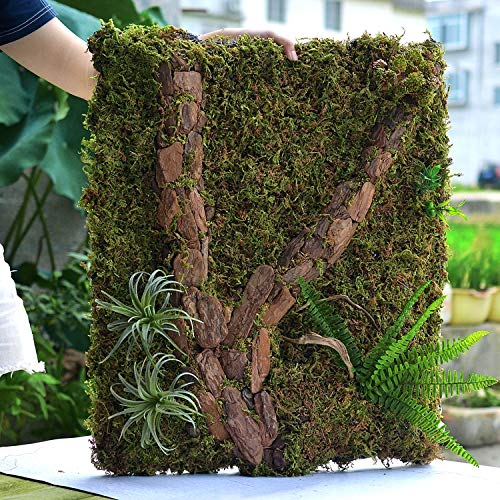JRTAN&Pet Reptiles Enredaderas Jungle Vines Artificial Ivy Leaf Hábitat Reptil Caja Fondo Tablero Selva Tropical paisajismo Espuma Roca Fondo, 20x30cm