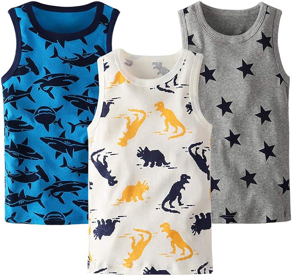 Huaer) Toddler Boys' 2-3 Pack Tank Tops (Dinosaur/Shark/Star, 2T)