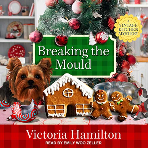 Breaking the Mould audiobook cover art
