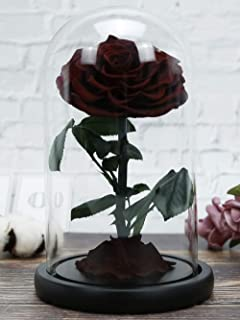 Rosmary 美女と野獣のバラ 本物バラ プリザーブドフラワーバラ 永遠の花 保存花 バレンタインデー母の日結婚記念日結婚式誕生日プレゼント 贈り物 ハイエンドギフトボックス