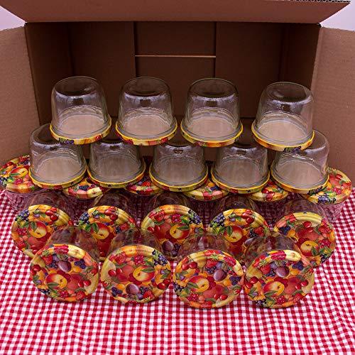 flaschenbauer.de 24er Set Sturzgläser 230 ml inkl. Twist Off Deckel TO82 mit Obstdekor zum Einmachen von Suppen, Babynahrung, Dips oder zur Aufbewahrung von Tee und Kräuter