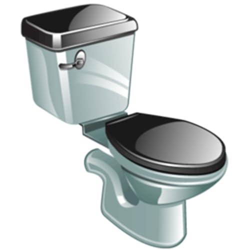 Toilet Flush Sound