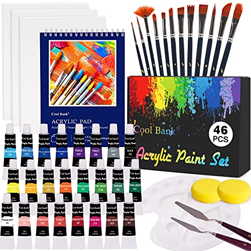 Acrylic Paint Set, Professional Painting Supplies Set, Includes 24 Acrylic Paints, 12 Painting Brushes, 3 Canvas, Palette, Acrylic Painting Pad and so on, Perfect Gift for Artists,Students