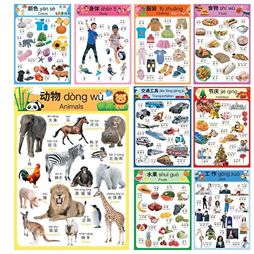 Learn Chinese for Kids Poster Set. Montessori-Inspired. Bilingual with Chinese-English. For Kids, Toddlers, and Preschoolers. Learning Videos Included. With Simplified Chinese and Pinyin.