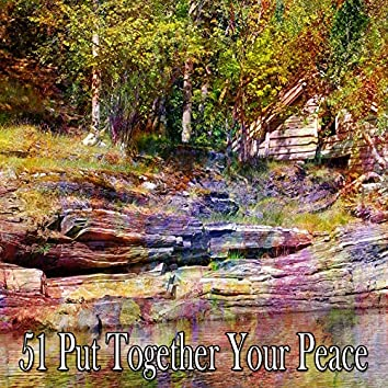 51 Put Together Your Peace