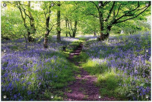 Wallario Garten-Poster Outdoor-Poster, Blaues Hasenglöckchen im Wald in Premiumqualität, für den Außeneinsatz geeignet