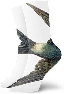 Calcetines de vestir divertidos para hombres/mujeres - Pinturas de pájaros Calcetines locos divertidos y coloridos