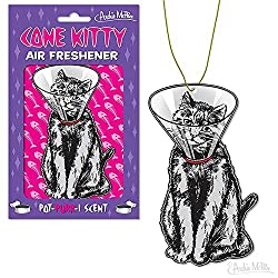 Funny Gift Ideas for Veterinarians - cone kitty