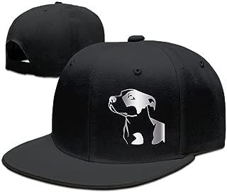 Best pitbull snapback hats Reviews