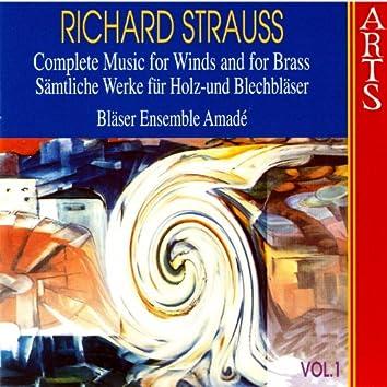 Strauss: Sämtliche Werke Für Holz Und Blechbläser, Vol. 1