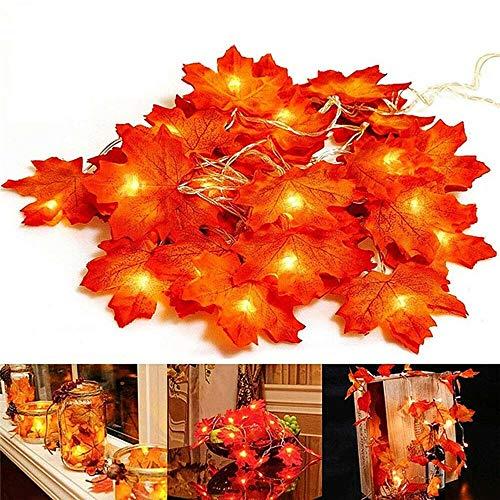 EAHKGmh - Ghirlanda decorativa a LED con foglie d'autunno, 10/20/40 LED, foglie d'acero autunnali, decorazione per Halloween, Natale, taglia: 3 m