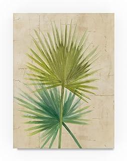 Trademark Fine Art Albena Hristova Fan Palm, 35x47-Inch