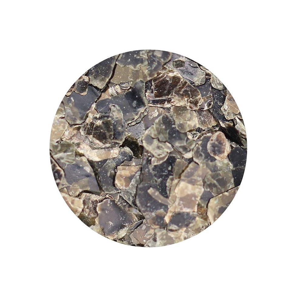 顕微鏡遊びますラオス人ネイルアート マイカフレーク 【タイプC】ジェル レジン シェル ホログラム 雲母 マイカ パウダー