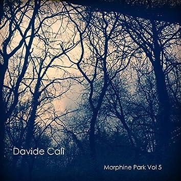 Morphine Park Vol 5