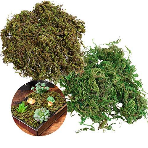 Musgo Verde Artificial 2 Pack Simulación Artificial De Musgo Musgo Verde Natural Piedras De Musgo Piedras De Musgo Artificiales Falso Musgo para La Decoración del Jardín del Hogar Patio Plantas 200g