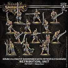 Retribution: House Ellowuyr Swordsmen with Officer and Standard