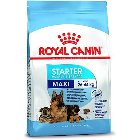 Royal Canin C-08445 SN Maxi Starter - 4 Kg
