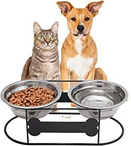 BINGPET Elevated Bowls for Dog & Cat, Double Raised Bowls with Arc Wire Stand, Dog Food and Water Stainless Steel Bowls, Pet Feeder with Bone Shape Plate, for Puppies and Cats