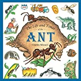 The Life and Times of the Ant, by Charles Micucci