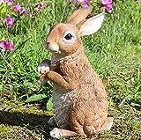 zenggp Conejo Figura Resina Simulación Decoración Animal Jardín Decoración para El...