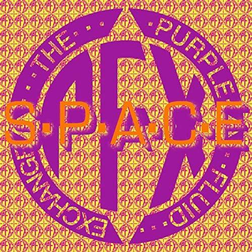 The Purple Fluid Exchange feat. Gaye Bykers On Acid