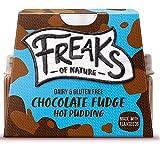 Freaks of Nature Coulant de Chocolate Tarta Vegano Postre Fudge Cremoso Pudin 100g | Vegano | Sin Gluten | Sin Soja | Sin Lactosa (Pack de 2)