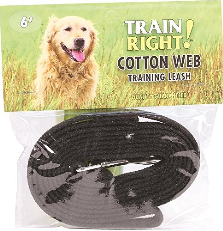 Coastal Pet Products 00506 BLK06 Train Right  Cotton Web Dog Training Leash Black, 6 Ft by Coastal Pet
