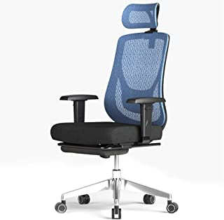 WXF Sillas Gaming Silla ergonómica Juego Silla de Oficina con sillas reposapiés Trabajo Silla giratoria for escritorios Silla de la computadora de Oficina Presidente Ejecutivo (Color : Blue)