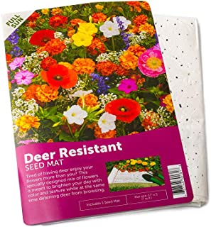 Garden Roll Out Pre-Seeded Flower Mats - Easy to Use, Add Beautiful Flowers to Any Outdoor Living Area - Includes 1 Seed Mat, 17