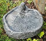 Abreuvoir à oiseaux avec oiseau, gris ardoise, pierre...