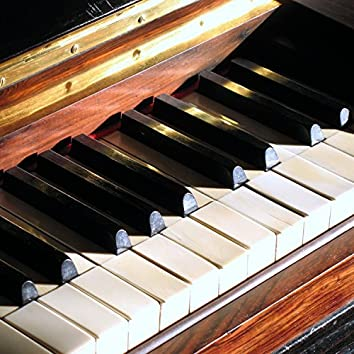 Bach Musette D Major (Electronic Version)