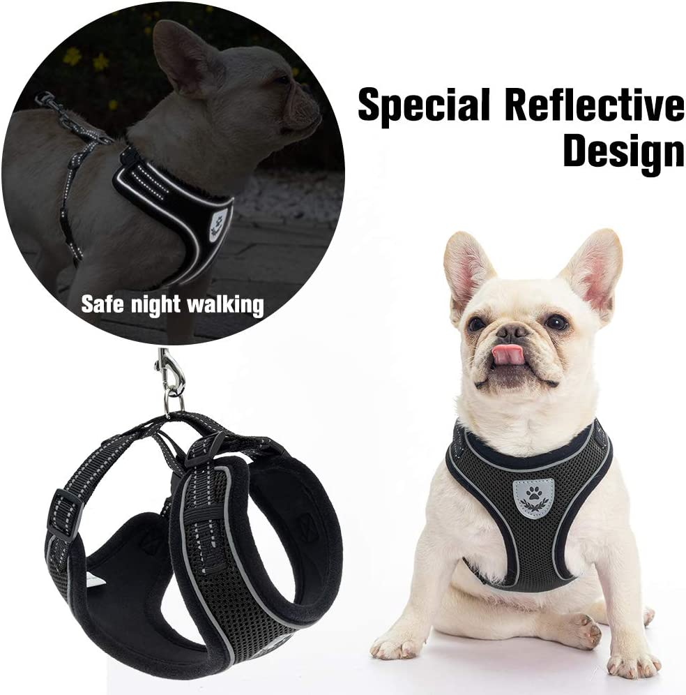 PUPTECK Cat Harness and Retractable Leash Set - Escape Proof Reflective Mesh Walking Vest with Adjustable 16.5ft Leash for Cats Puppies Small Dog Black