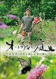 オーレリアンの庭 今森光彦 四季を楽しむ里山暮らし[DVD]