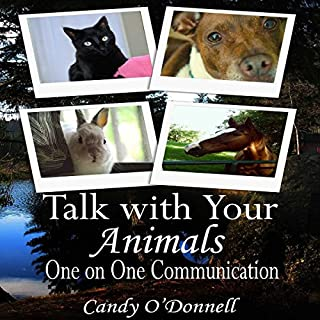 Talk With Your Animals audiobook cover art