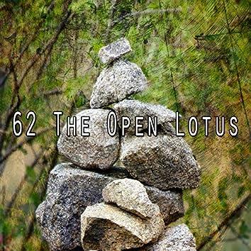 62 The Open Lotus