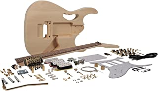 diy jem guitar kit