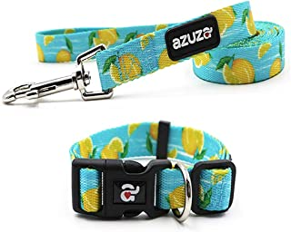 Best leash and collar set for humans Reviews