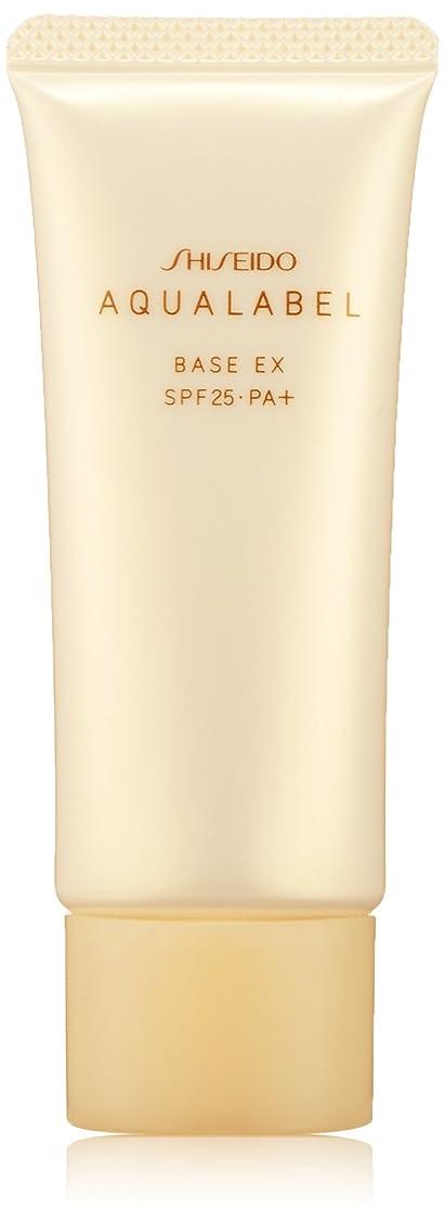 心配するガイダンス熟すアクアレーベル 明るいつや肌ベース (SPF25?PA+) 25g