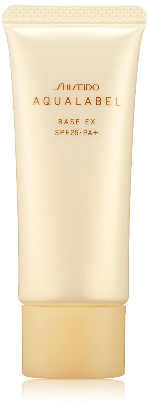 メイン西バレーボールアクアレーベル 明るいつや肌ベース (SPF25?PA+) 25g